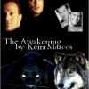 awakening-fanartsseries